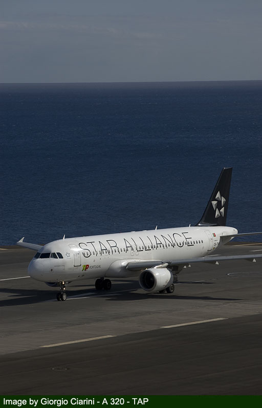 funchal airport image 77
