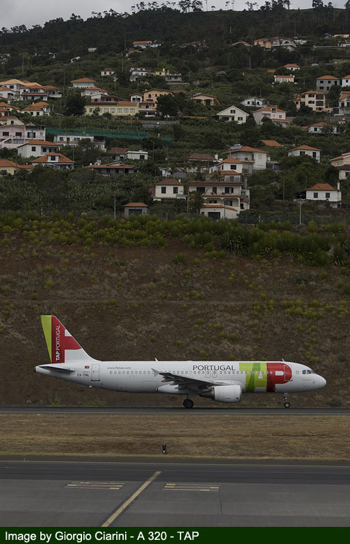 funchal airport image 78