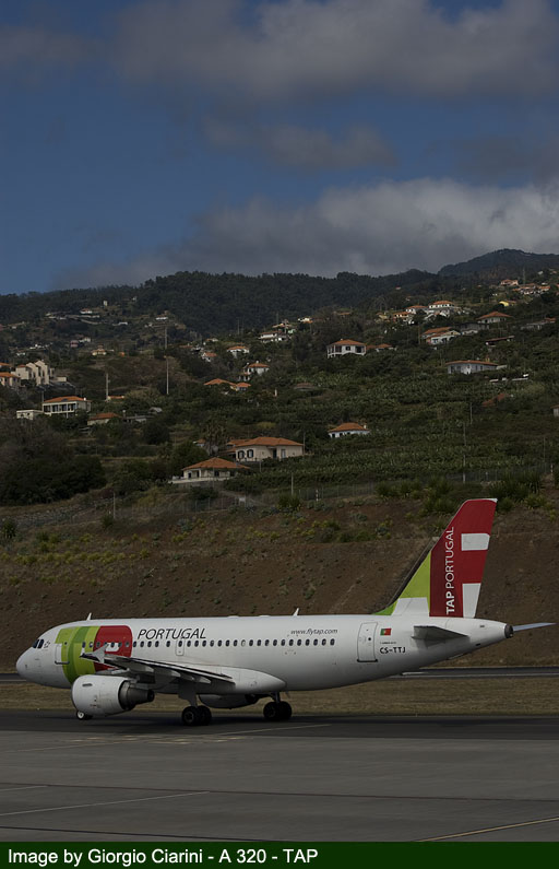funchal airport image 80