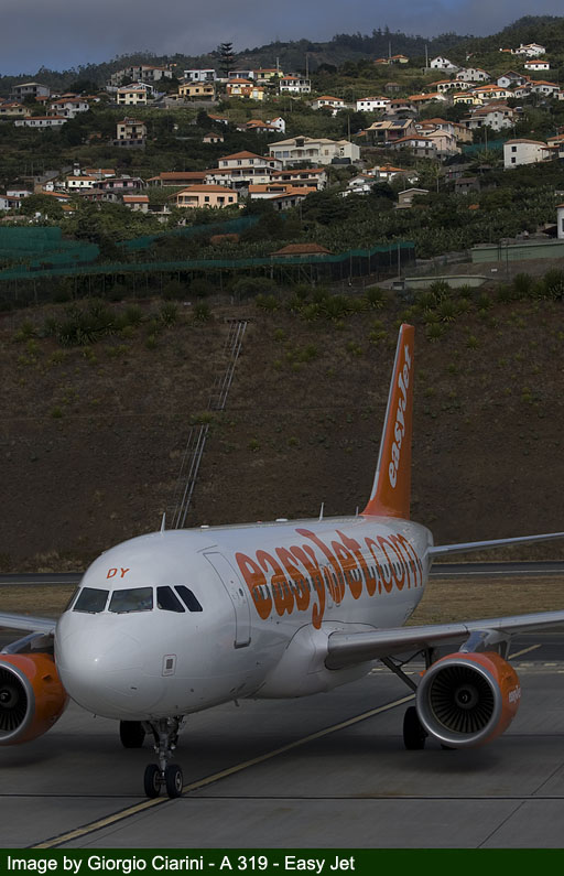 funchal airport image 81