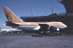 johannesburg airports image 11